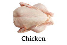 chicken as source of protein