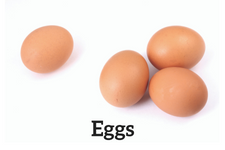 eggs as source of proteins