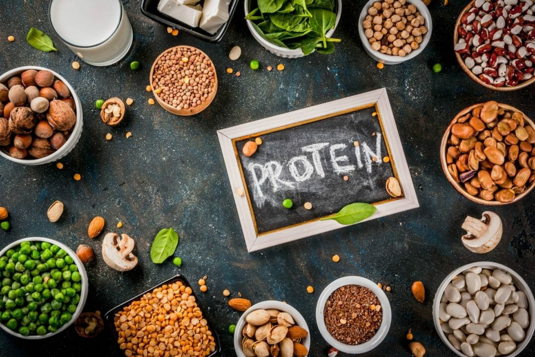 protein plant based food