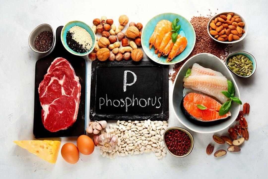 phosphorus foods